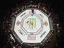 LAS VEGAS, NV - MARCH 05: An overhead view of the Octagon as Diego Sanchez punches Jim Miller in their lightweight bout during the UFC 196 event inside MGM Grand Garden Arena on March 5, 2016 in Las Vegas, Nevada.  (Photo by Josh Hedges/Zuffa LLC/Zuffa LLC via Getty Images) *** Local Caption *** Diego Sanchez; Jim Miller