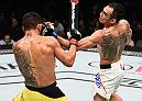 MEXICO CITY, MEXICO - NOVEMBER 05:  (R-L) Tony Ferguson of the United States punches Rafael Dos Anjos of Brazil in their lightweight bout during the UFC Fight Night event at Arena Ciudad de Mexico on November 5, 2016 in Mexico City, Mexico. (Photo by Jeff Bottari/Zuffa LLC/Zuffa LLC via Getty Images)