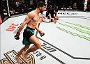 PHOENIX, AZ - JANUARY 15:  (L-R) Yair Rodriguez celebrates his victory over BJ Penn in their featherweight bout during the UFC Fight Night event inside Talking Stick Resort Arena on January 15, 2017 in Phoenix, Arizona. (Photo by Jeff Bottari/Zuffa LLC/Zuffa LLC via Getty Images)