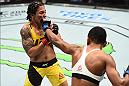HOUSTON, TX - FEBRUARY 04:  (R-L) Angela Hill punches Jessica Andrade of Brazil in their women's strawweight bout during the UFC Fight Night event at the Toyota Center on February 4, 2017 in Houston, Texas. (Photo by Jeff Bottari/Zuffa LLC/Zuffa LLC via Getty Images)