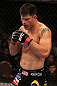 UFC 130: Brian Stann
