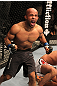 UFC 130: Demetrious Johnson