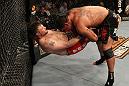 UFC 130: Mir vs. Nelson