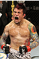 The Ultimate Fighter Season 13 Finale: Scott Jorgensen celebrates his win.