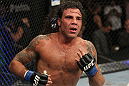 The Ultimate Fighter Season 13 Finale: Clay Guida