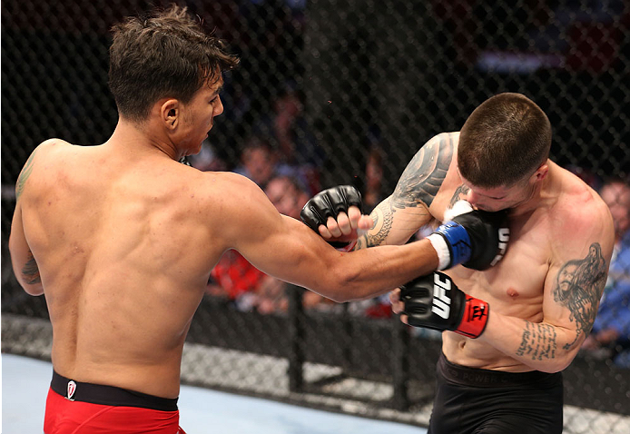 HOUSTON, TEXAS - OCTOBER 19:  (L-R) Andre Fili punches Jeremy Larsen in their UFC featherweight bout at the Toyota Center on October 19, 2013 in Houston, Texas. (Photo by Nick Laham/Zuffa LLC/Zuffa LLC via Getty Images)