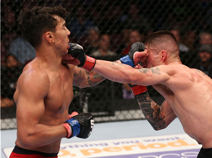 HOUSTON, TEXAS - OCTOBER 19:  (R-L) Jeremy Larsen exchanges punches with Andre Fili in their UFC featherweight bout at the Toyota Center on October 19, 2013 in Houston, Texas. (Photo by Nick Laham/Zuffa LLC/Zuffa LLC via Getty Images)