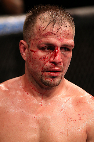 UFC light heavyweight Fabio Maldonado