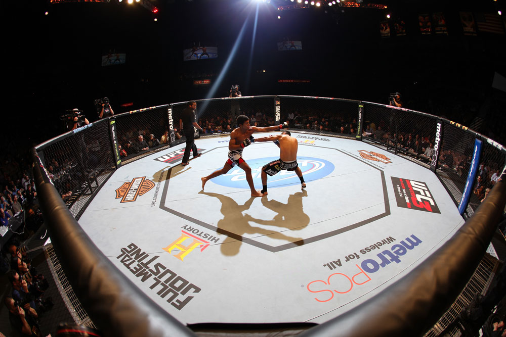 LAS VEGAS, NV - FEBRUARY 04:  (L-R) Alex Caceres and Edwin Figueroa exchange blows during the UFC 143 event at Mandalay Bay Events Center on February 4, 2012 in Las Vegas, Nevada.  (Photo by Nick Laham/Zuffa LLC/Zuffa LLC via Getty Images) *** Local Caption *** Alex Caceres; Edwin Figueroa
