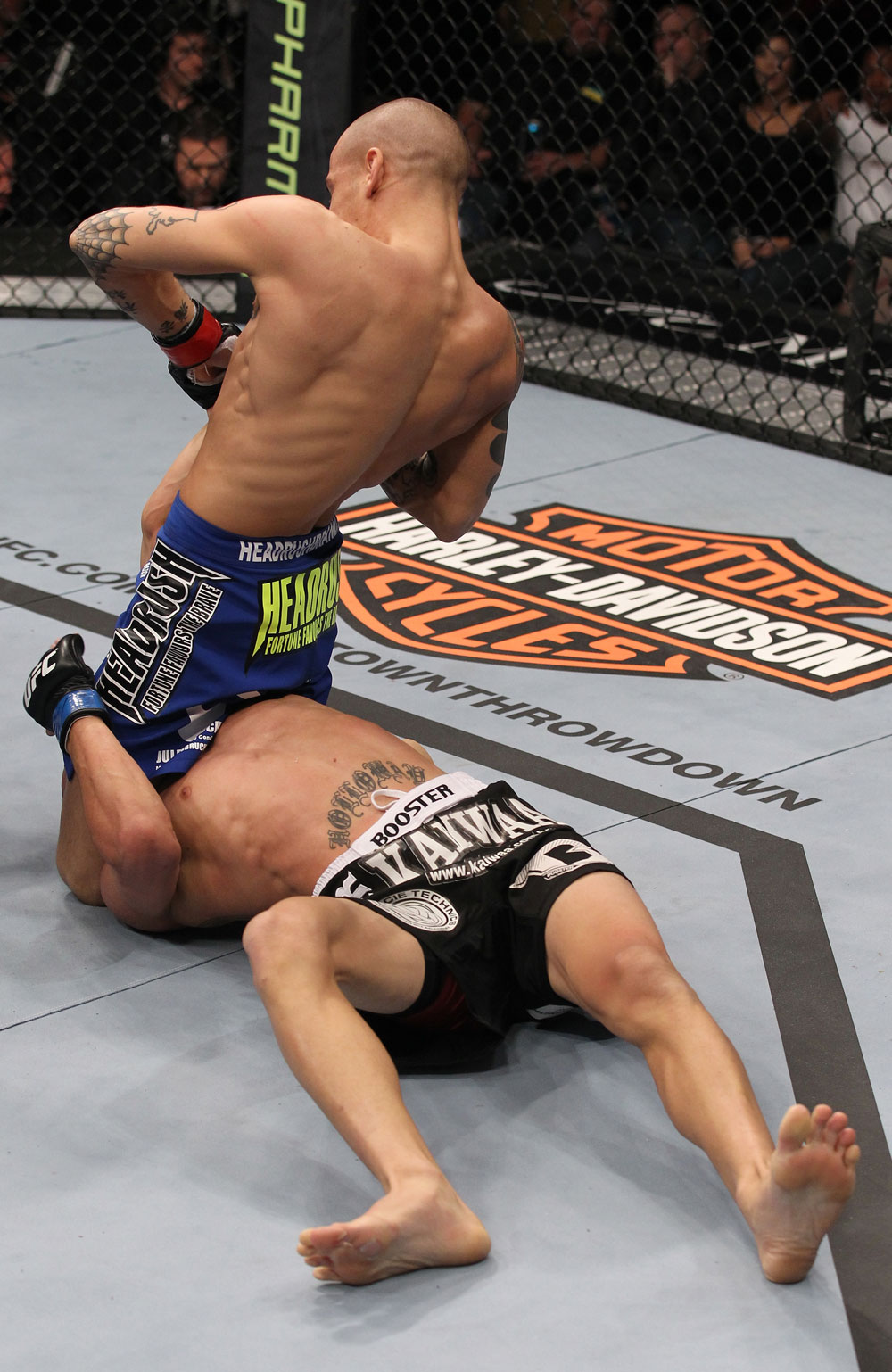 LAS VEGAS, NV - FEBRUARY 04:  Dustin Poirier (blue shorts) attempts to submit Max Holloway during the UFC 143 event at Mandalay Bay Events Center on February 4, 2012 in Las Vegas, Nevada.  (Photo by Nick Laham/Zuffa LLC/Zuffa LLC via Getty Images) *** Local Caption *** Dustin Poirier
