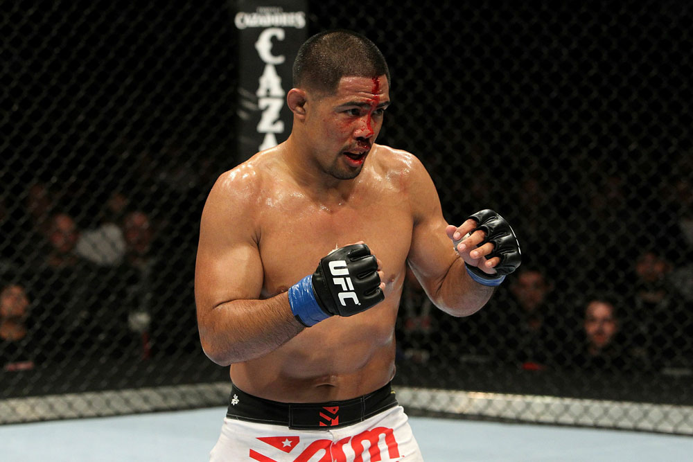 UFC 123: Mark Munoz
