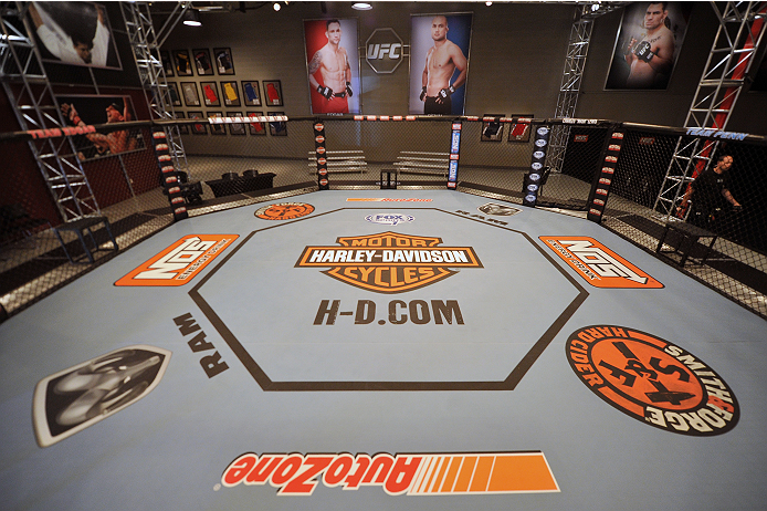 LAS VEGAS, NV - OCTOBER 24:  A general view of the TUF gym Octagon during filming of season nineteen of The Ultimate Fighter on October 24, 2013 in Las Vegas, Nevada. (Photo by Jeff Bottari/Zuffa LLC/Zuffa LLC via Getty Images) *** Local Caption ***