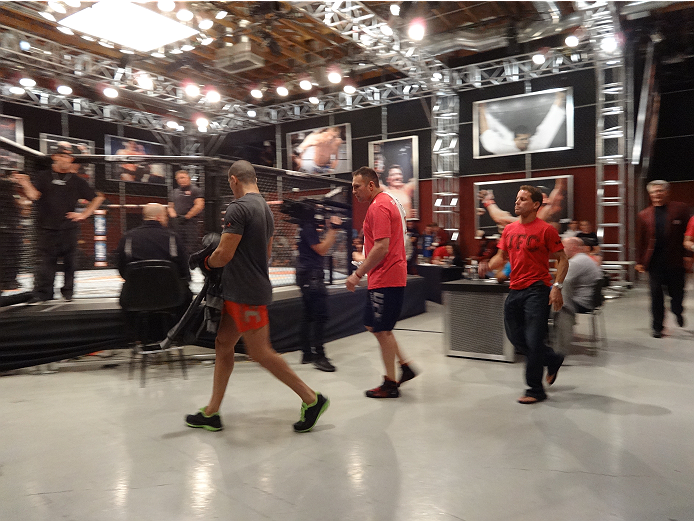 Ultimate Fighter 19 contestant Nordine Taleb makes his way to the Octagon.