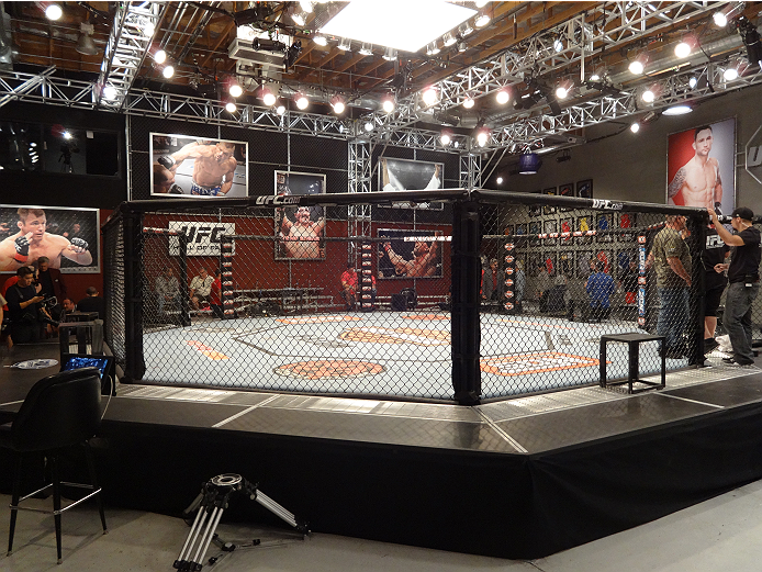 Behind the scenes of the Ultimate Fighter 19 elimination fights.