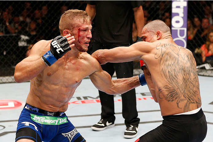 LAS VEGAS, NV - MAY 24:  T.J. Dillashaw (left) punches Renan Barao in their bantamweight championship bout during the UFC 173 event at the MGM Grand Garden Arena on May 24, 2014 in Las Vegas, Nevada. (Photo by Josh Hedges/Zuffa LLC/Zuffa LLC via Getty Images)
