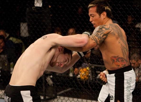 Healy vs. Torres