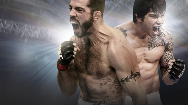 <a href='../event/UFC-Silva-vs-Irvin'>UFC Fight Night:</a> Brown vs. Silva