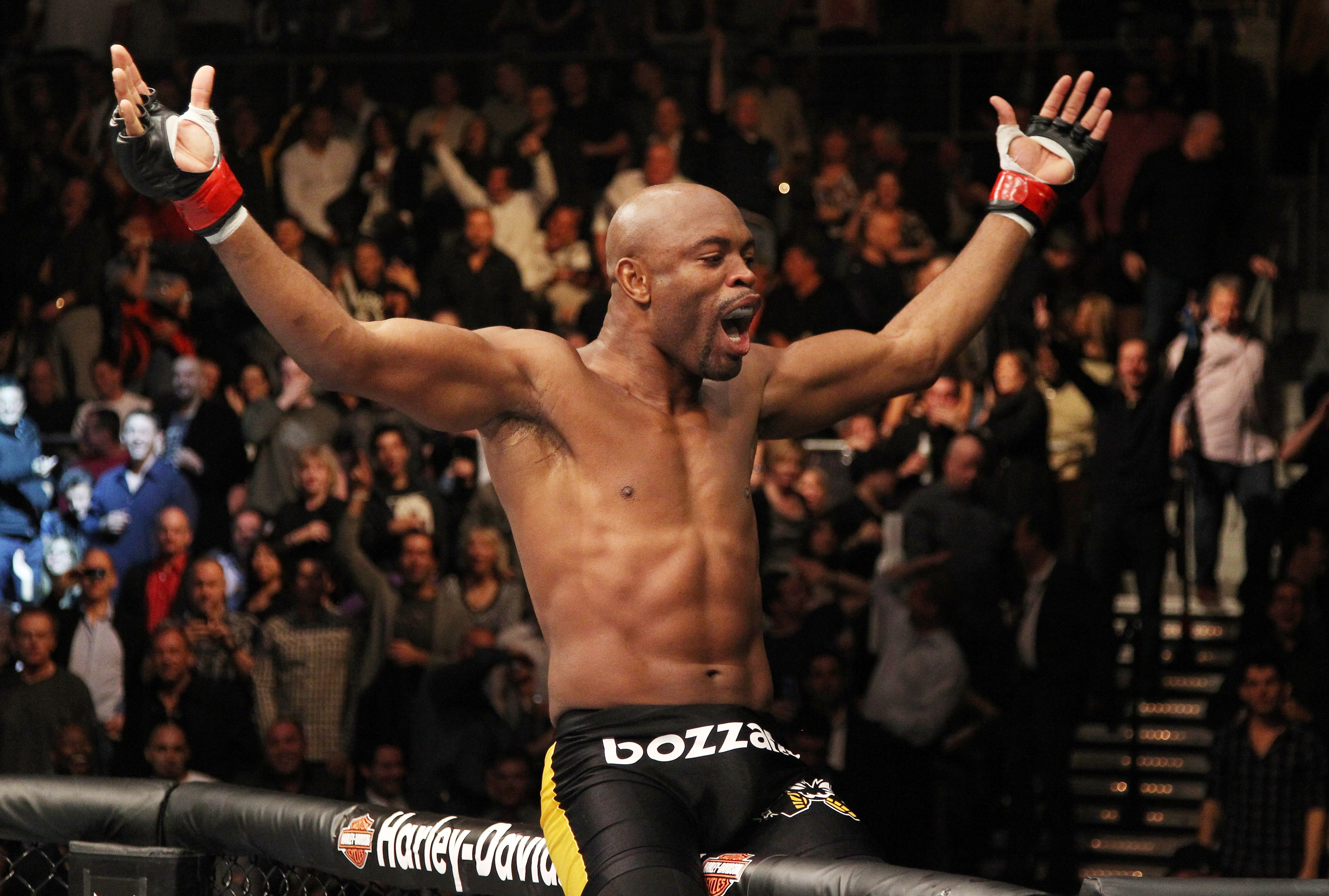 Silva celebrates after defeating Vitor Belfort
