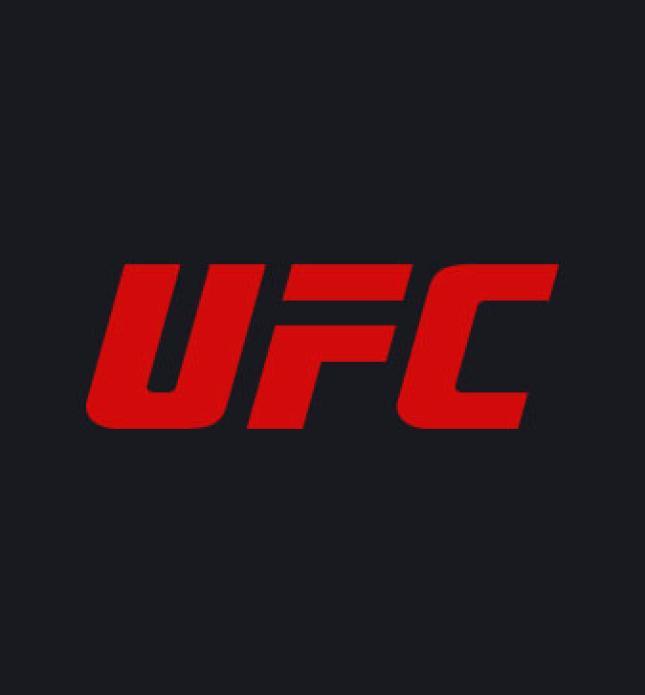 UFC 232:ジョーンズ vs. グスタフソン 2