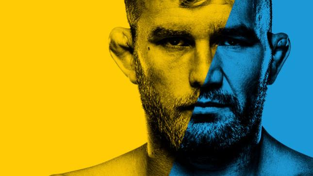 UFCファイトナイト:グスタフソン vs. テイシェイラ