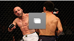 UFC® on FOX Shogun vs Vera Gallery