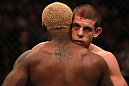 Melvin Guillard and Joe Lauzon after the fight