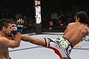 LAS VEGAS, NV - FEBRUARY 04:  Alex Caceres (right) kicks Edwin Figueroa during the UFC 143 event at Mandalay Bay Events Center on February 4, 2012 in Las Vegas, Nevada.  (Photo by Nick Laham/Zuffa LLC/Zuffa LLC via Getty Images) *** Local Caption *** Alex Caceres; Edwin Figueroa