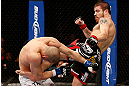 LAS VEGAS, NV - DECEMBER 29:  (R-L) Jim Miller kicks Joe Lauzon during their lightweight fight at UFC 155 on December 29, 2012 at MGM Grand Garden Arena in Las Vegas, Nevada. (Photo by Josh Hedges/Zuffa LLC/Zuffa LLC via Getty Images) *** Local Caption *** Joe Lauzon; Jim Miller