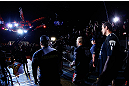 SAITAMA, JAPAN - MARCH 03:  Mark Hunt enters the arena before his heavyweight fight against Stefan Struve during the UFC on FUEL TV event at Saitama Super Arena on March 3, 2013 in Saitama, Japan.  (Photo by Josh Hedges/Zuffa LLC/Zuffa LLC via Getty Images)