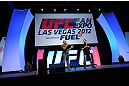 LAS VEGAS, NV - JULY 06:  Joe Rogan and Mike Goldberg answer questions at the UFC Fan Expo on July 6, 2012 in Las Vegas, Nevada. (Photo by Al Powers /Zuffa LLC/Zuffa LLC via Getty Images)