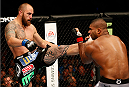 BOSTON, MA - AUGUST 17:  (L-R) Travis Browne knocks down Alistair Overeem with a kick in their UFC heavyweight bout at TD Garden on August 17, 2013 in Boston, Massachusetts. (Photo by Josh Hedges/Zuffa LLC/Zuffa LLC via Getty Images)