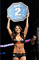 MILWAUKEE, WI - AUGUST 31:  UFC Octagon Girl Arianny Celeste introduces round two between Al Iaquinta and Ryan Couture in their UFC lightweight bout at BMO Harris Bradley Center on August 31, 2013 in Milwaukee, Wisconsin. (Photo by Jeff Bottari/Zuffa LLC/Zuffa LLC via Getty Images) *** Local Caption *** Arianny Celeste