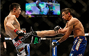 LAS VEGAS, NV - NOVEMBER 16:  (L-R) Erik Perez kicks Edwin Figueroa in their bantamweight bout during the UFC 167 event inside the MGM Grand Garden Arena on November 16, 2013 in Las Vegas, Nevada. (Photo by Josh Hedges/Zuffa LLC/Zuffa LLC via Getty Images) *** Local Caption *** Erik Perez; Edwin Figueroa