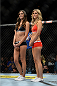 LAS VEGAS, NV - NOVEMBER 30:  (L-R) UFC Octagon Girls Vanessa Hanson and Chrissy Blair stand in the Octagon after Chris Holdsworth defeated David Grant in their bantamweight final fight during The Ultimate Fighter season 18 live finale inside the Mandalay Bay Events Center on November 30, 2013 in Las Vegas, Nevada. (Photo by Jeff Bottari/Zuffa LLC/Zuffa LLC via Getty Images) *** Local Caption *** Vanessa Hanson; Chrissy Blair