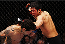 MACAU - MARCH 01:  Nam Phan is bloodied in his bantamweight fight with Vaughan Lee during the UFC Fight Night event at the Venetian Macau on March 1, 2014 in Macau. (Photo by Mitch Viquez/Zuffa LLC/Zuffa LLC via Getty Images)