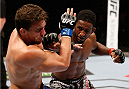 AUCKLAND, NEW ZEALAND - JUNE 28:  (R-L) Neil Magny punches Rodrigo de Lima in their welterweight fight during the UFC Fight Night event at Vector Arena on June 28, 2014 in Auckland, New Zealand.  (Photo by Josh Hedges/Zuffa LLC/Zuffa LLC via Getty Images)