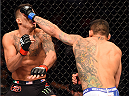 DALLAS, TX - MARCH 14:  (R-L) Rafael dos Anjos of Brazil punches Anthony Pettis in their UFC lightweight championship bout during the UFC 185 event at the American Airlines Center on March 14, 2015 in Dallas, Texas. (Photo by Josh Hedges/Zuffa LLC/Zuffa LLC via Getty Images)