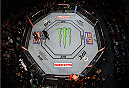 MEXICO CITY, MEXICO - JUNE 13:   An overhead view of the Octagon as Fabricio Werdum of Brazil celebrates his submission victory over Cain Velasquez of the United States in their UFC heavyweight championship bout during the UFC 188 event inside the Arena Ciudad de Mexico on June 13, 2015 in Mexico City, Mexico. (Photo by Josh Hedges/Zuffa LLC/Zuffa LLC via Getty Images)