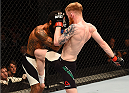 GLASGOW, SCOTLAND - JULY 18:  (R-L) Paddy Holohan of Ireland knees Vaughan Lee of England in their flyweight fight during the UFC Fight Night event inside the SSE Hydro on July 18, 2015 in Glasgow, Scotland.  (Photo by Josh Hedges/Zuffa LLC/Zuffa LLC via Getty Images)