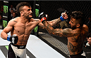 LAS VEGAS, NV - SEPTEMBER 05: (L-R) John Lineker and Francisco Rivera exchange punches in their bantamweight bout during the UFC 191 event inside MGM Grand Garden Arena on September 5, 2015 in Las Vegas, Nevada.  (Photo by Jeff Bottari/Zuffa LLC/Zuffa LLC via Getty Images) *** Local Caption *** Francisco Rivera; John Lineker