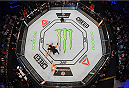 MELBOURNE, AUSTRALIA - NOVEMBER 15:  An overhead view of the Octagon as Holly Holm celebrates after her knockout victory over Ronda Rousey in their UFC women's bantamweight championship bout during the UFC 193 event at Etihad Stadium on November 15, 2015 in Melbourne, Australia.  (Photo by Josh Hedges/Zuffa LLC/Zuffa LLC via Getty Images)