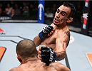 LAS VEGAS, NV - DECEMBER 11: Tony Ferguson (top) punches Edson Barboza in their lightweight bout during the TUF Finale event inside The Chelsea at The Cosmopolitan of Las Vegas on December 11, 2015 in Las Vegas, Nevada.  (Photo by Jeff Bottari/Zuffa LLC/Zuffa LLC via Getty Images) *** Local Caption *** Edson Barboza; Tony Ferguson