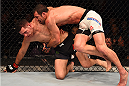LAS VEGAS, NV - DECEMBER 12: Luke Rockhold (right) takes down Chris Weidman in their UFC middleweight championship bout during the UFC 194 event inside MGM Grand Garden Arena on December 12, 2015 in Las Vegas, Nevada.  (Photo by Josh Hedges/Zuffa LLC/Zuffa LLC via Getty Images) *** Local Caption *** Chris Weidman; Luke Rockhold