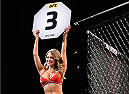 LAS VEGAS, NV - JANUARY 02:  Octagon Girl Brittney Palmer introduces round three of Soto vs Tanaka during their bantamweight bout during the UFC 195 event inside MGM Grand Garden Arena on January 2, 2016 in Las Vegas, Nevada.  (Photo by Jeff Bottari/Zuffa LLC/Zuffa LLC via Getty Images)